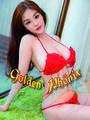 Asia Studio Golden Phönix